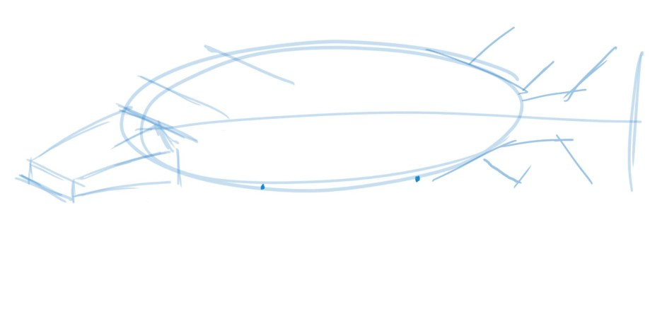 Draw two dots to indicate the origin of the pectoral and pelvic fins.