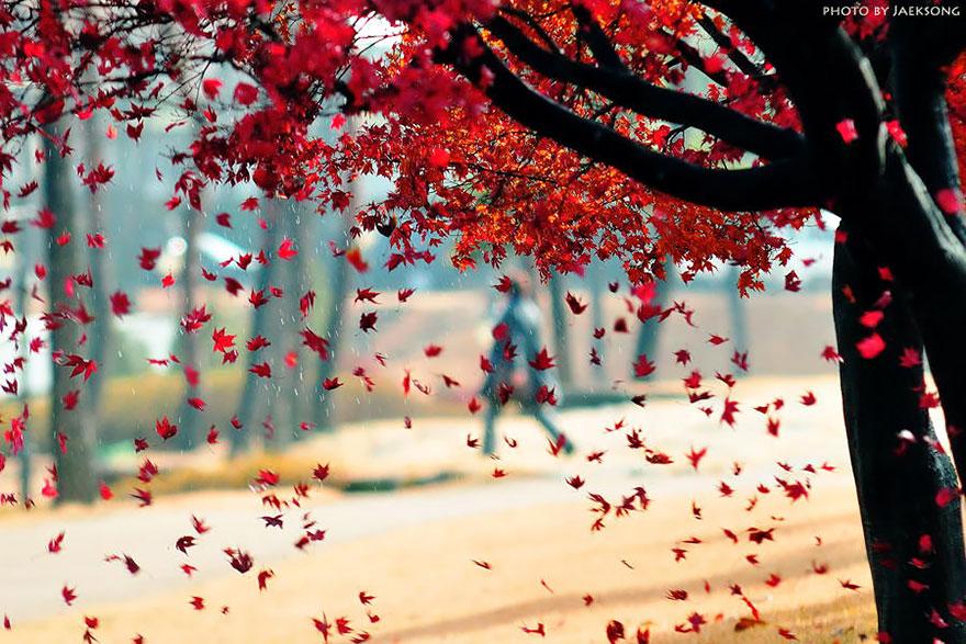 Wallpaper Hello Fall 25 Magnifiques Paysages D Automne Joli Joli Design