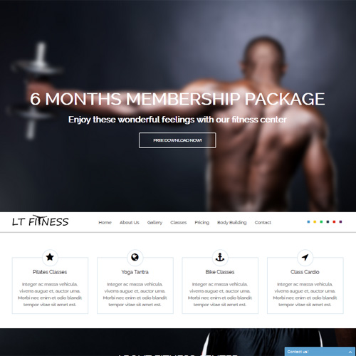 Download Free LT Fitness Joomla Template