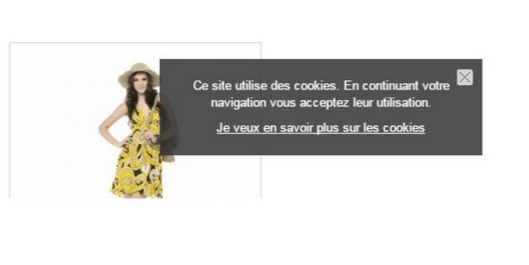 module-indispensable-prestashop-avertissement-cookies