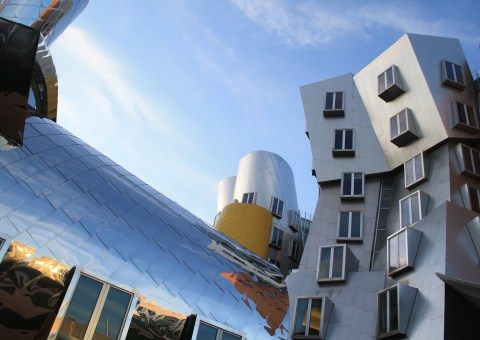 MIT Gehry