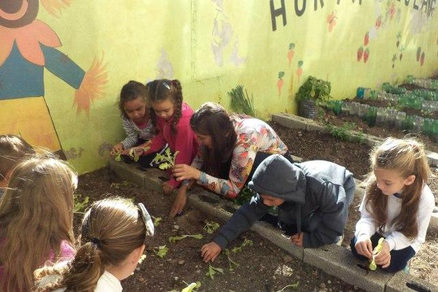 Foto: Escola Antônio Paschoal / Divulgação