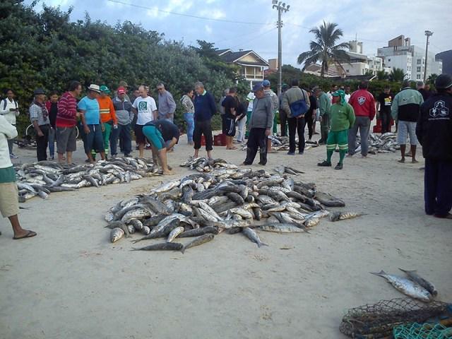 Foto: Marlene Fontoura / Divulgação JCC