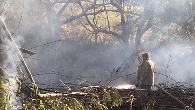 Corpo de Bombeiros controla incêndio no bosque do Lago das Rosas