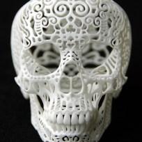 Crania Anatomica Filigre