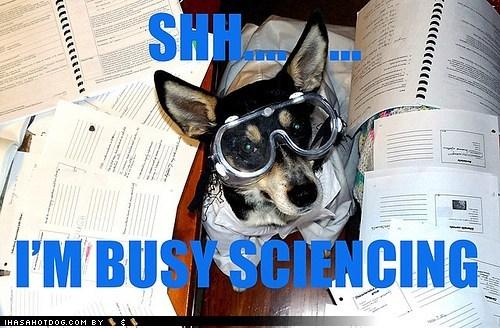 busy_sciencing