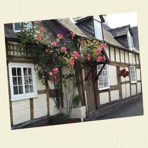 Fox Pie Cottage, Eardisley Angle - Ref L12