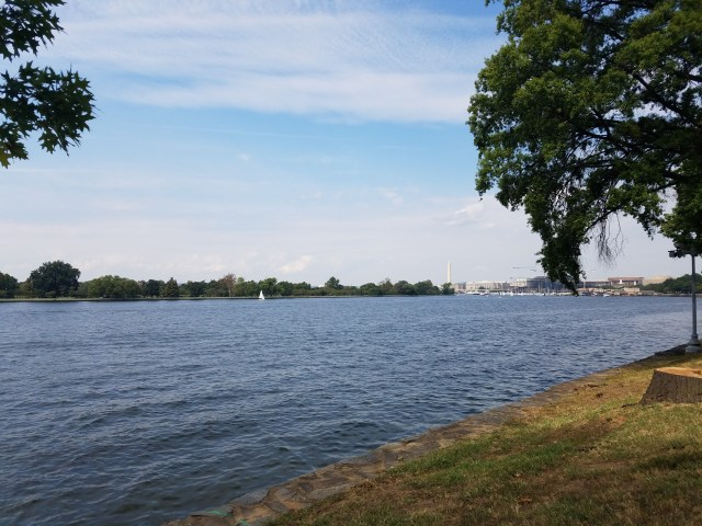 View of Hains Point