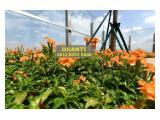 Pakubuwono Spring 2BR New, Good Investment Apartemen Nyaman