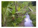 saluran air langsung dari irigasi