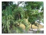 Jual/Sewa Tanah Bagus di Bintaro Pondok Indah