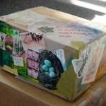 deb+box2