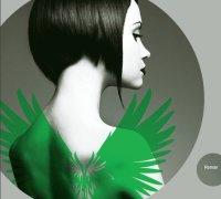 les-ailes-d-emeraude