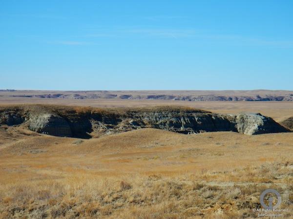 Montana Mule Deer Country