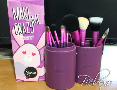 Review: Sigma Beauty Make Me Crazy Essential Brush Kit