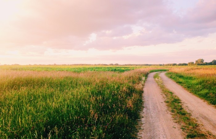 She Dwells in Security: Fighting Anxiety with Truths from the Psalms
