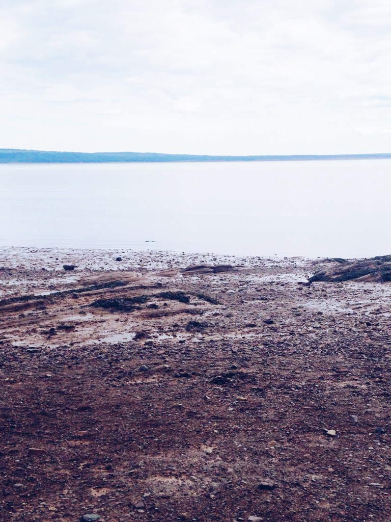 Walking on Water in The Bay of Fundy