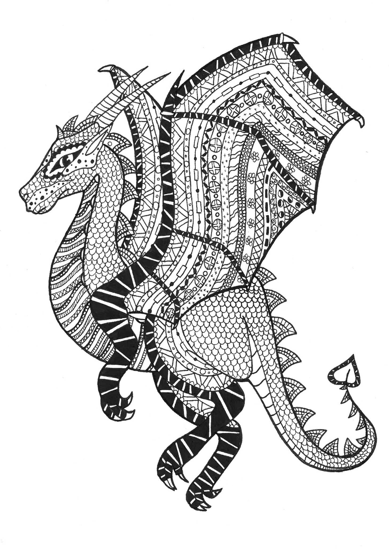 Coloring page adults dragon zentangle rachel free to print