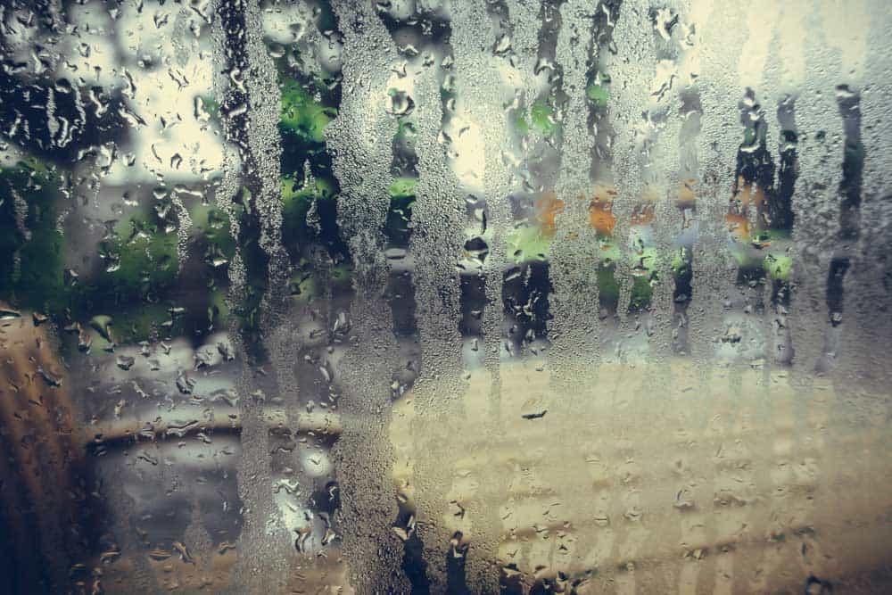 Lutter contre l\u0027humidité à la maison, 7 règles et astuces - Que Faire En Cas D Humidite Dans Une Maison