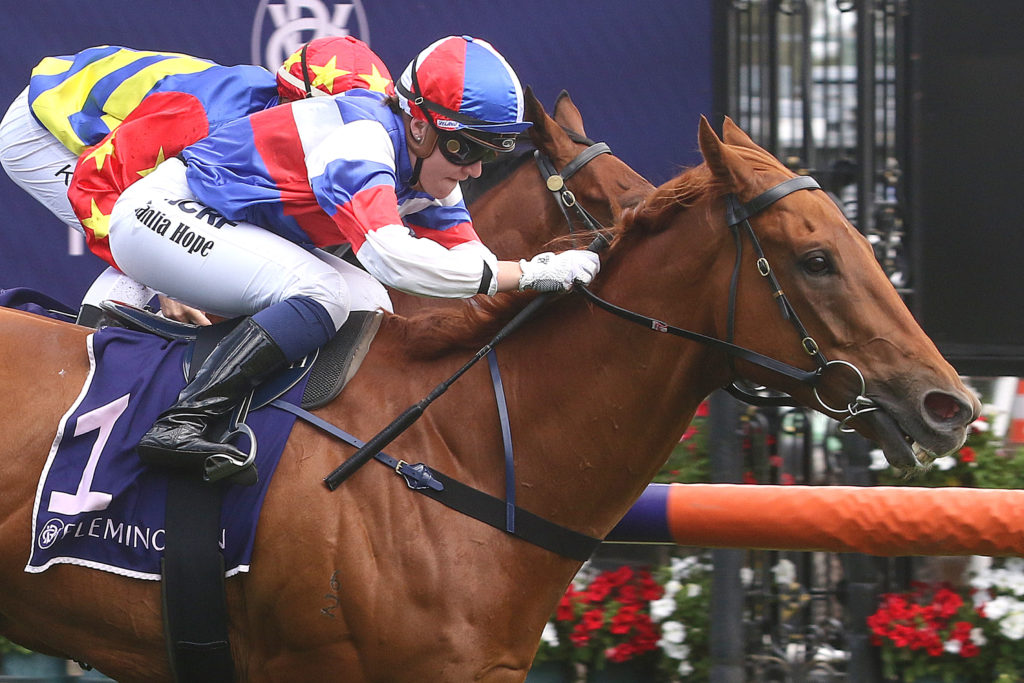 Chester Manifold Stakes Nominations 2019