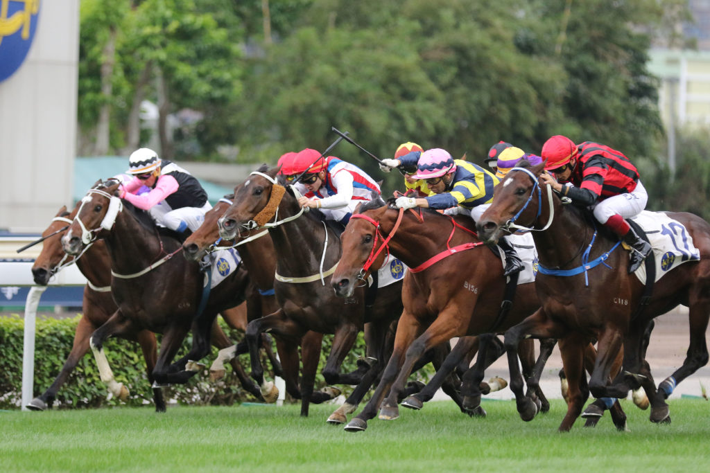 1 1 2019 Horse Racing Tips And Best Bets Sha Tin