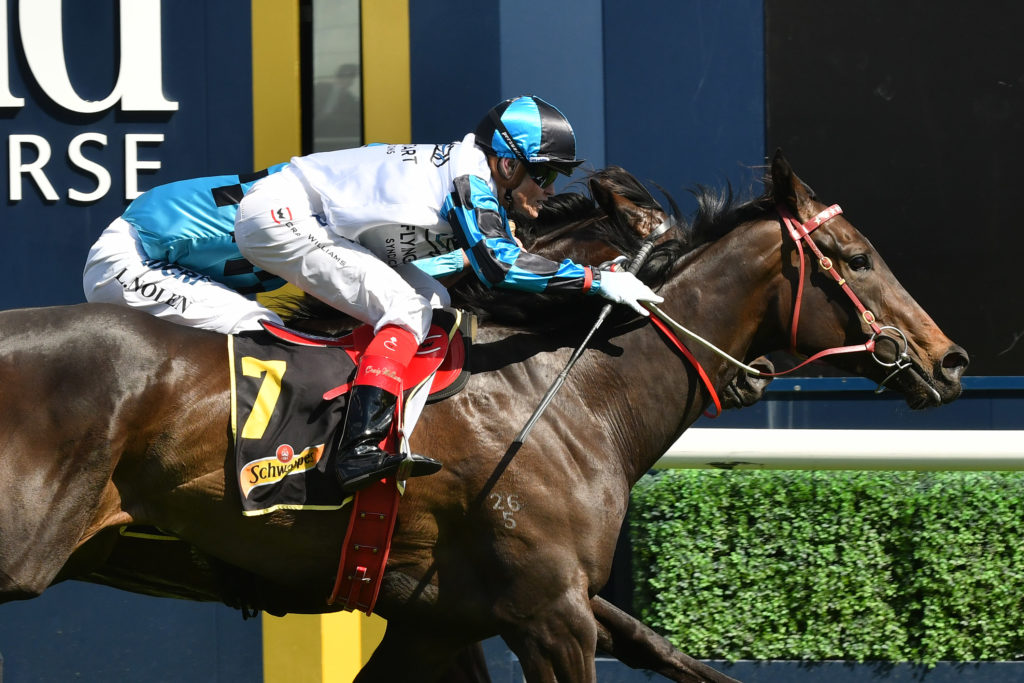 Tab39s Biggest Vic Tote Dividends For 2018