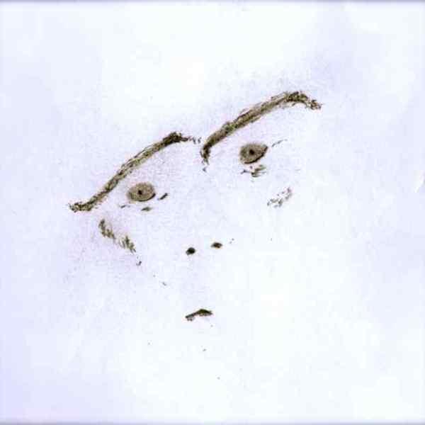 AN APE IN THE SNOW (1)