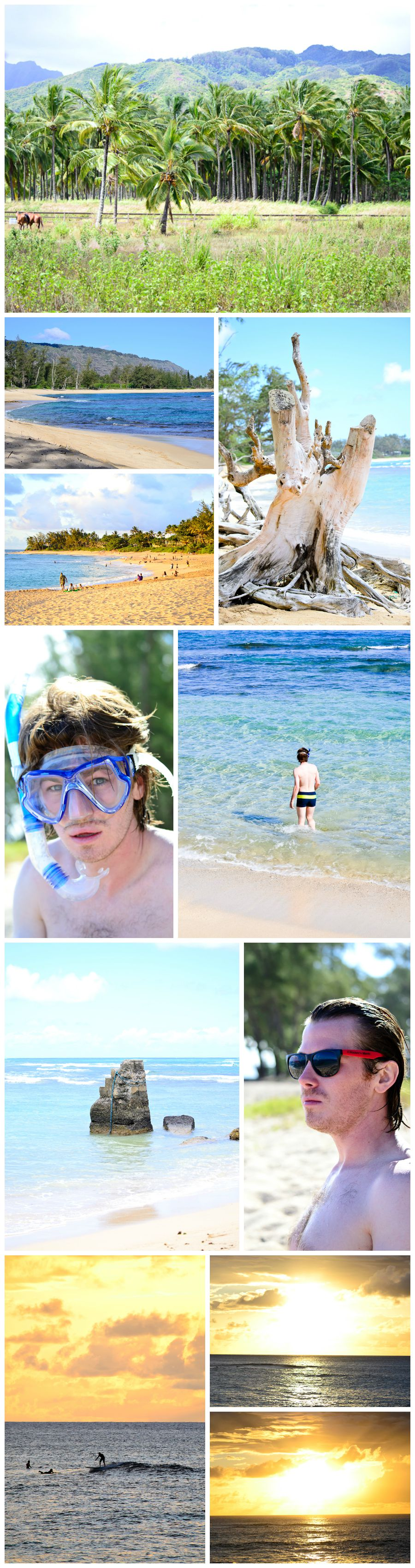 Hawaii Collage 6c