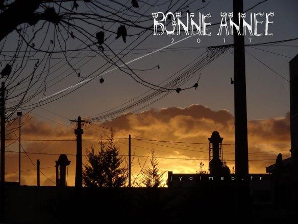 bonne-annee-2017-dsc057672