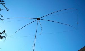 15 Meter Moxon Beam in Action