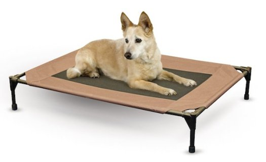 4 best chew proof dog beds for rough chewers for Good dog bed for chewers