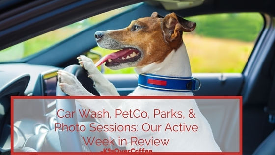 K9sOverCoffee   Car Wash, PetCo, Parks, & Photo Sessions_ Our Active Week in Review