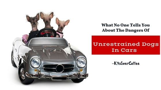 K9sOverCoffee | What No One Tells You About The Dangers Of Unrestrained Dogs In Cars