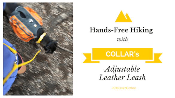 K9sOverCoffee | Hands-Free Hiking With COLLAR's Adjustable Leather Leash