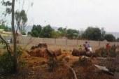 Dabola: Bientôt un Centre de traitement d'Ebola (C.T.E) dans la préfecture