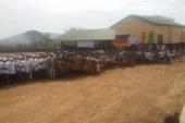 Education-Dabola: Le MEPU-A salue le courage des enseignants communautaires