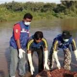 Tim-gabungan-mengevakuasi-tubuh-bocah-SD-yang-ditemukan-tewas-akibat-hanyut-di-sungai-Kalibaru,-Pesanggaran,-Banyuwangi,-Minggu-29-Mei-2016.