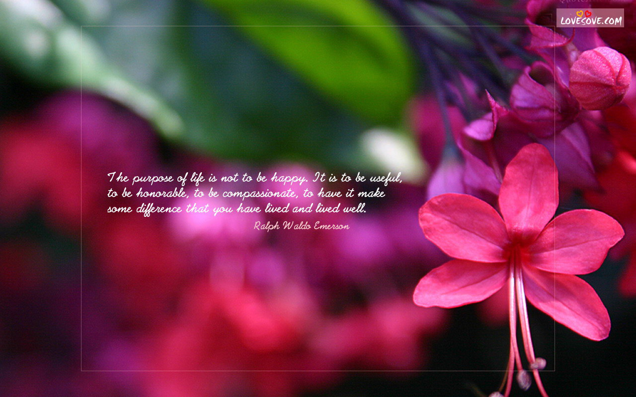Gud Morning Cute Wallpapers Good Morning Images With Quotes In Marathi