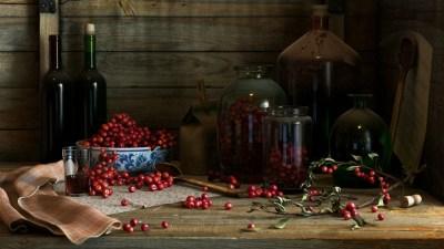 Slumberhouse Sadanne: Days of Wine & Roses - Kafkaesque