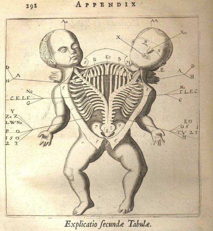 Appendix Explicatio Fecundae Tabulae