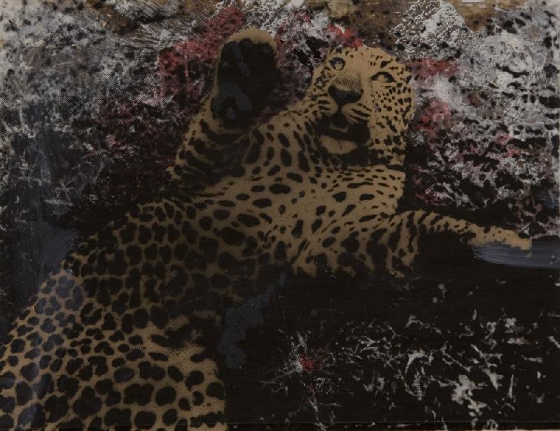 Pino Pascali Leopardo 1964