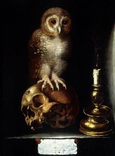Vanitas with Owl, anonimo 17esimo secolo