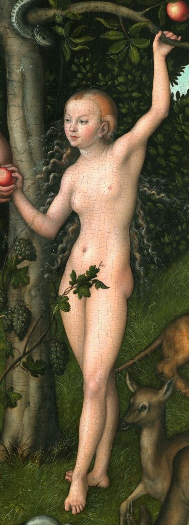{{title|{{Adam and Eve}}}} 1526 {{Technique|oil|panel}} {{Size|cm|117|80}}