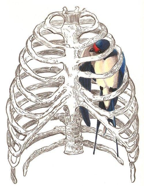 illustrazione per Bluebird di Charles Bukowski, artista sconosciuto