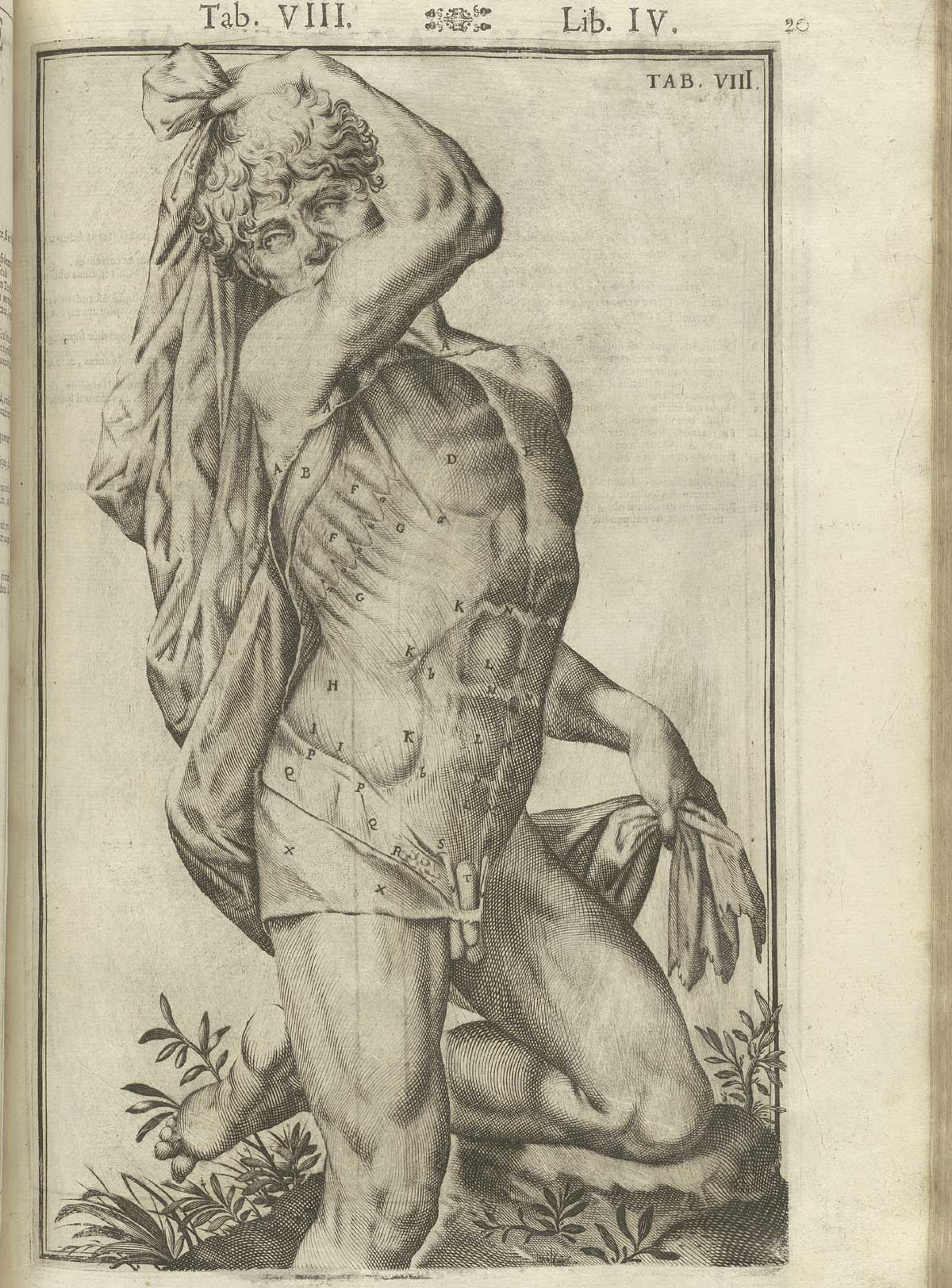 Giulio Cesare Casseri, Tabulae Anatomicae, 1627, incisioni Francesco Valesio3
