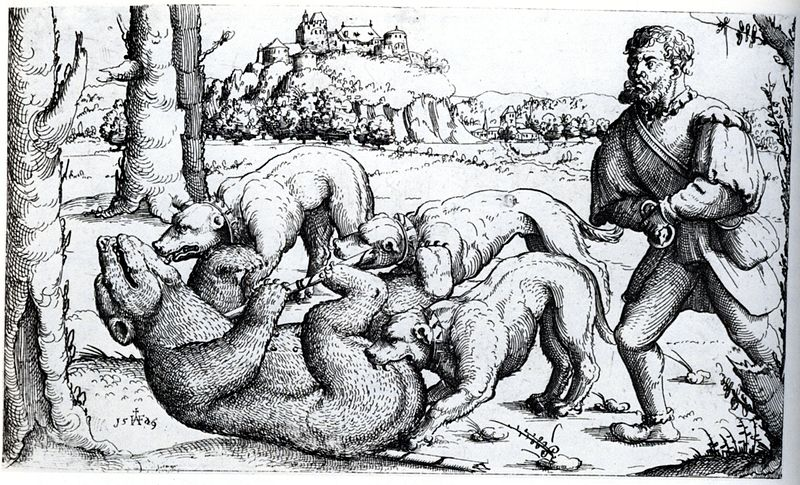 Augustin Hirschvogel, 1503-1553, Bear_Hunt