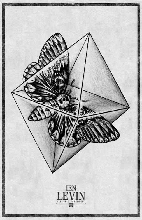 ien levin crystal moth