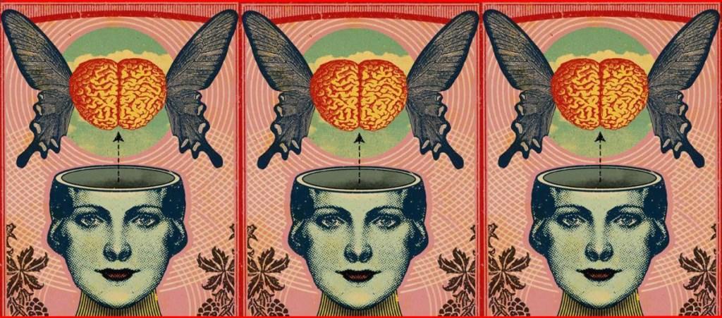 cervello volante 3