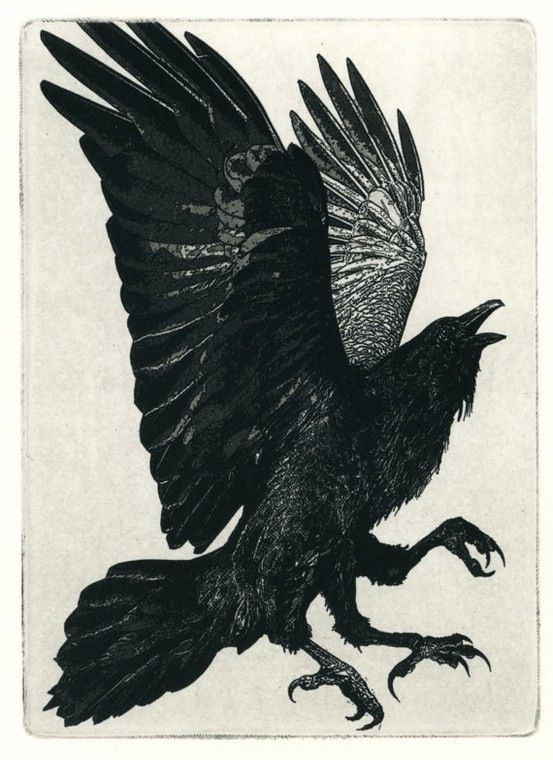 Three-legged Raven by Larry Vienneau