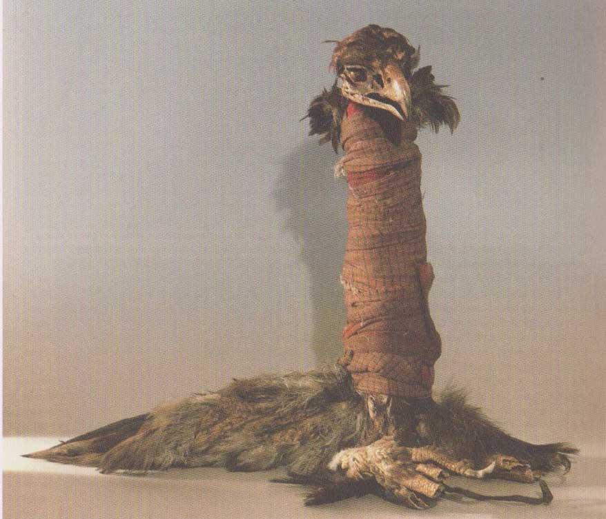 fagotto-medicinale-aquila-tribù-crow-indiani-delle-pianure